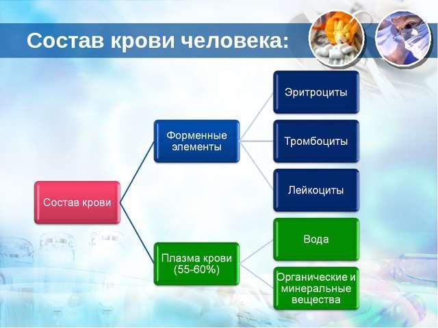 Состав крови человека: