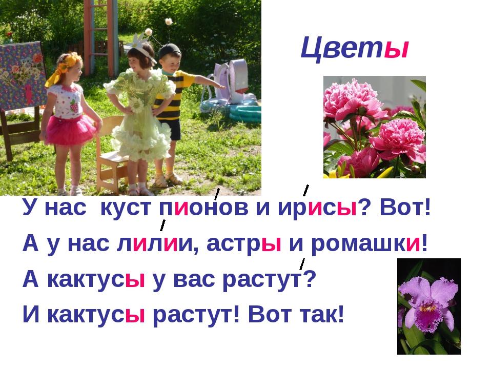 Цветы У нас куст пионов и ирисы? Вот! А у нас лилии, астры и ромашки! А какт...