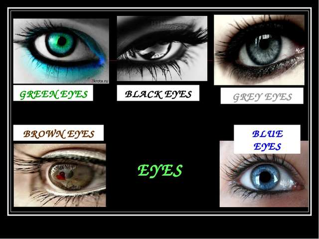 EYES GREEN EYES GREY EYES BLACK EYES BROWN EYES BLUE EYES