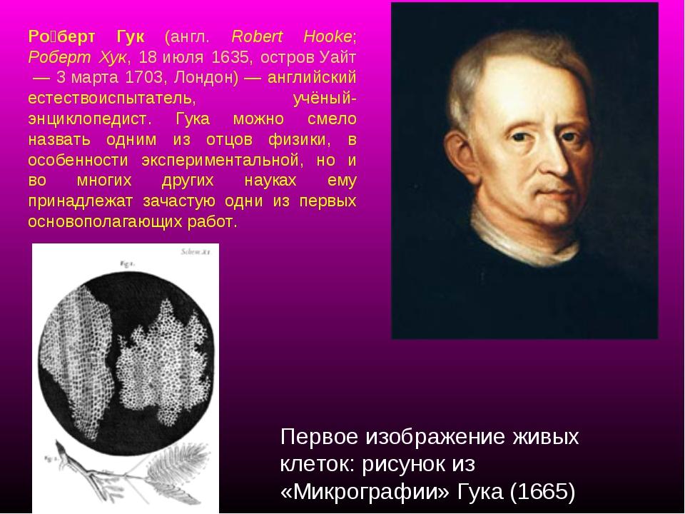 Ро́берт Гук (англ. Robert Hooke; Роберт Хук, 18 июля 1635, остров Уайт— 3 ма...