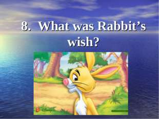 8. What was Rabbit's wish?