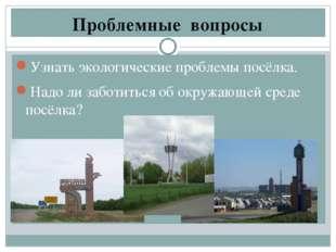 Проблемные вопросы Узнать экологические проблемы посёлка. Надо ли заботиться