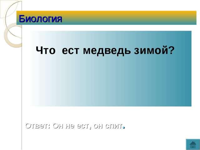 Биология Что ест медведь зимой? Ответ: Он не ест, он спит.
