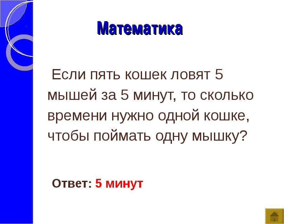 Математика Ответ: 5 минут Если пять кошек ловят 5 мышей за 5 минут, то сколь...