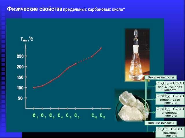 Физические свойства карбоновых кислот Физические свойства предельных карбонов...