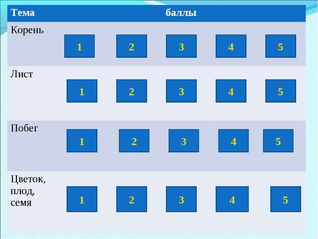 1 3 4 5 1 2 1 2 5 4 3 3 2 4 5 1 2 3 4 5 Тема баллы Корень  Лист...