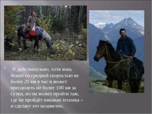 И действительно, хотя конь бежит со средней скоростью не более 20 км в час и