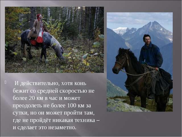 И действительно, хотя конь бежит со средней скоростью не более 20 км в час и...