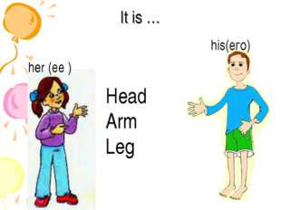 It is … her (ее ) his(его) Head Arm Leg