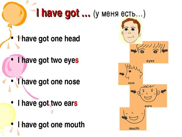 I have got … (у меня есть…) I have got one head I have got two eyes I have go...