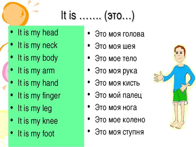 It is ……. (это…) It is my head It is my neck It is my body It is my arm It is...