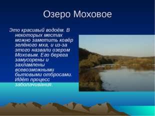 Озеро Моховое Это красивый водоём. В некоторых местах можно заметить ковёр зе