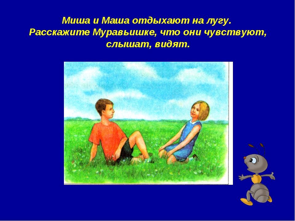 Миша и Маша отдыхают на лугу. Расскажите Муравьишке, что они чувствуют, слыша...