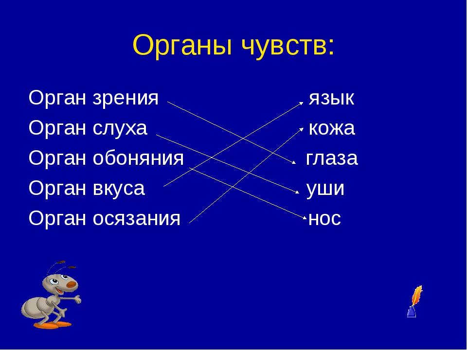 Органы чувств: Орган зрения язык Орган слуха кожа Орган обоняния глаза Орган...