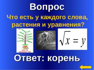 Вопрос Что есть у каждого слова, растения и уравнения?
