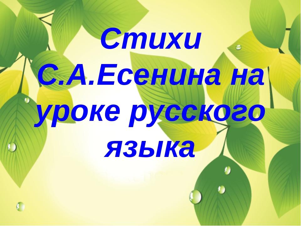Стихи С.А.Есенина на уроке русского языка
