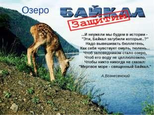 """Озеро ...И неужели мы будем в истории - """"Эти, Байкал загубили которые..?"""" На"""