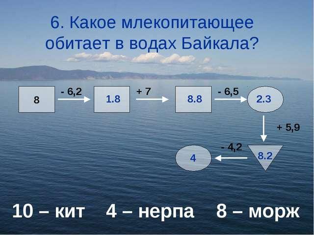 6. Какое млекопитающее обитает в водах Байкала? 10 – кит4 – нерпа 8 – морж...