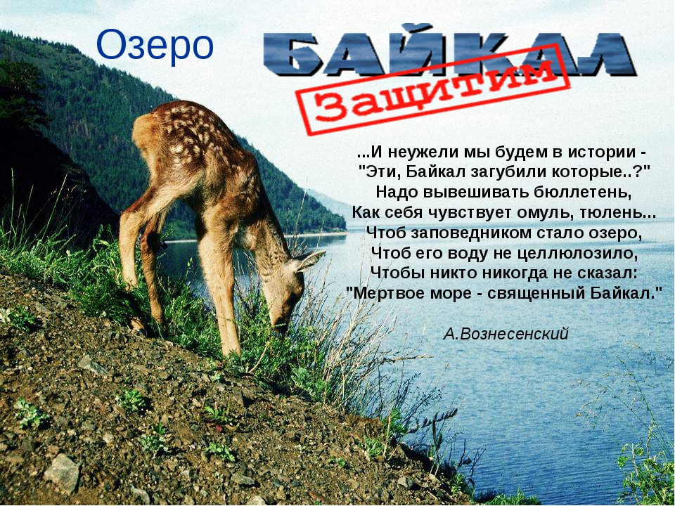 """Озеро ...И неужели мы будем в истории - """"Эти, Байкал загубили которые..?"""" На..."""