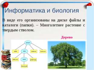 Информатика и биология В виде его организованы на диске файлы и каталоги (пап