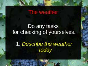 The weather Do any tasks for checking of yourselves. 1. Describe the weather