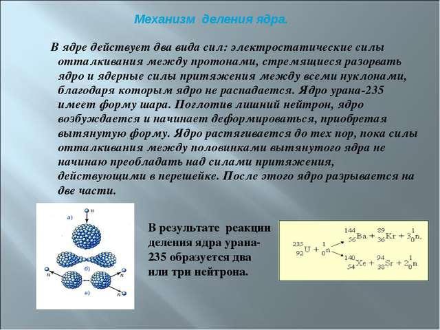 В ядре действует два вида сил: электростатические силы отталкивания между пр...