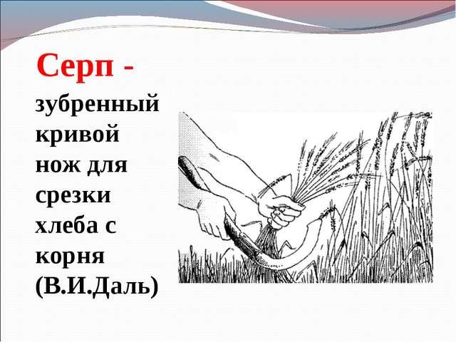 Серп - зубренный кривой нож для срезки хлеба с корня (В.И.Даль)