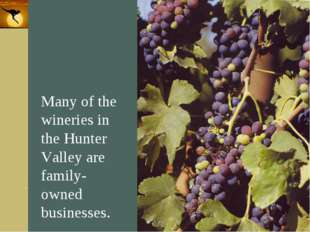 Company Logo Many of the wineries in the Hunter Valley are family-owned busin