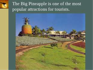 Company Logo The Big Pineapple is one of the most popular attractions for tou