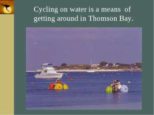 Company Logo Cycling on water is a means of getting around in Thomson Bay. Co