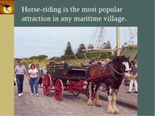 Company Logo Horse-riding is the most popular attraction in any maritime vill