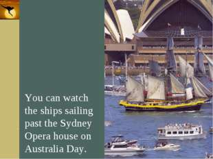 Company Logo You can watch the ships sailing past the Sydney Opera house on A