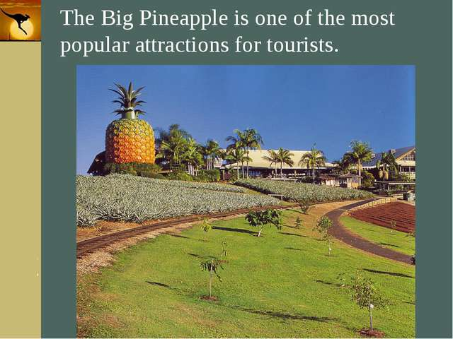 Company Logo The Big Pineapple is one of the most popular attractions for tou...
