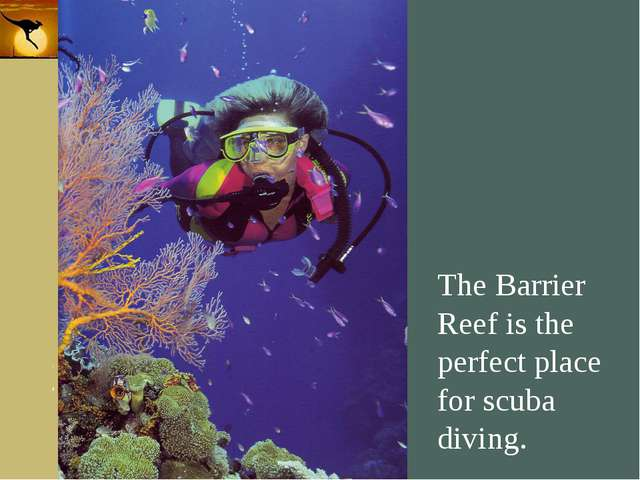 Company Logo The Barrier Reef is the perfect place for scuba diving. Company...