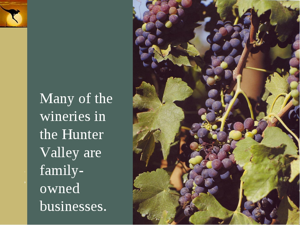 Company Logo Many of the wineries in the Hunter Valley are family-owned busin...