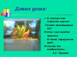 Девиз урока: « О, сколько нам открытий чудных Готовит просвещенья дух И опыт