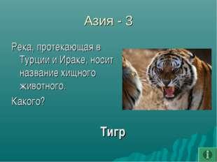 Азия - 3 Река, протекающая в Турции и Ираке, носит название хищного животного