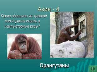 Азия - 4 Какие обезьяны из красной книги учатся играть в компьютерные игры? О