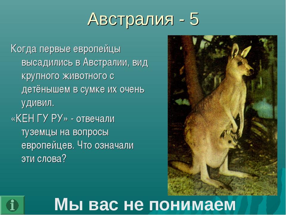 Австралия - 5 Когда первые европейцы высадились в Австралии, вид крупного жив...