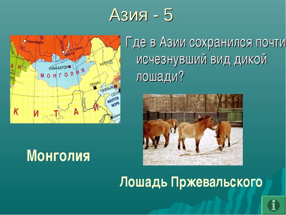 Азия - 5 Где в Азии сохранился почти исчезнувший вид дикой лошади? Монголия Л...