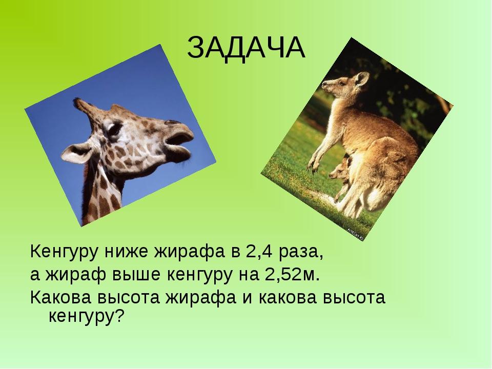 ЗАДАЧА Кенгуру ниже жирафа в 2,4 раза, а жираф выше кенгуру на 2,52м. Какова...