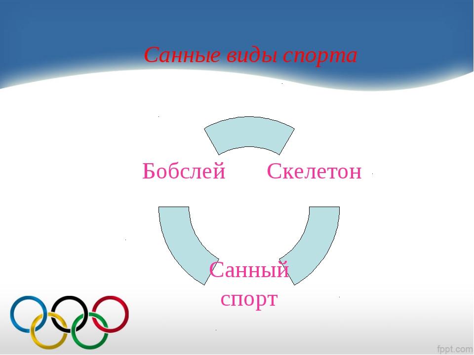 Санные виды спорта