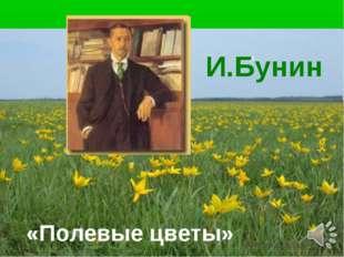И И.Бунин «Полевые цветы»