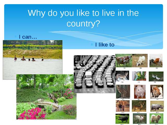 Why do you like to live in the country? I can… I like to