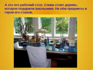 А это его рабочий стол. Слева стоит дерево, которое подарили школьники. На нё
