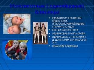 Монозиготные ( однояйцовые) близнецы РАЗВИВАЮТСЯ ИЗ ОДНОЙ ЯЙЦЕКЛЕТКИ, ОПЛОДОТ