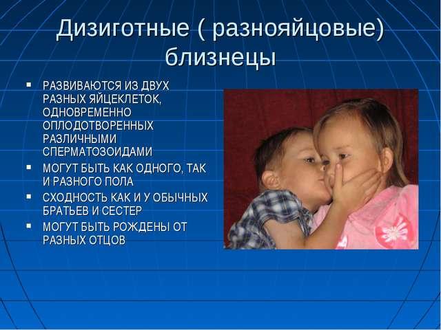 Дизиготные ( разнояйцовые) близнецы РАЗВИВАЮТСЯ ИЗ ДВУХ РАЗНЫХ ЯЙЦЕКЛЕТОК, ОД...