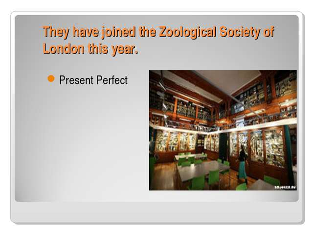 They have joined the Zoological Society of London this year. Present Perfect