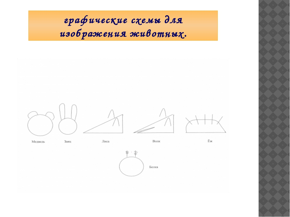 графические схемы для изображения животных.