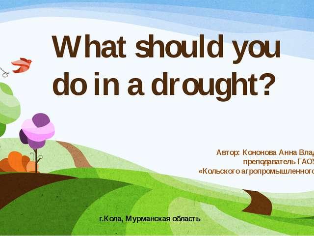 What should you do in a drought? Автор: Кононова Анна Владимировна, преподава...